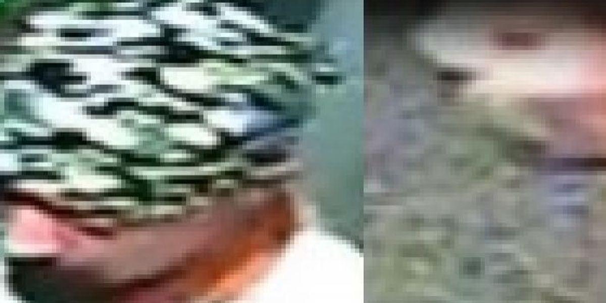 Long Beach police working to identify burglary suspects