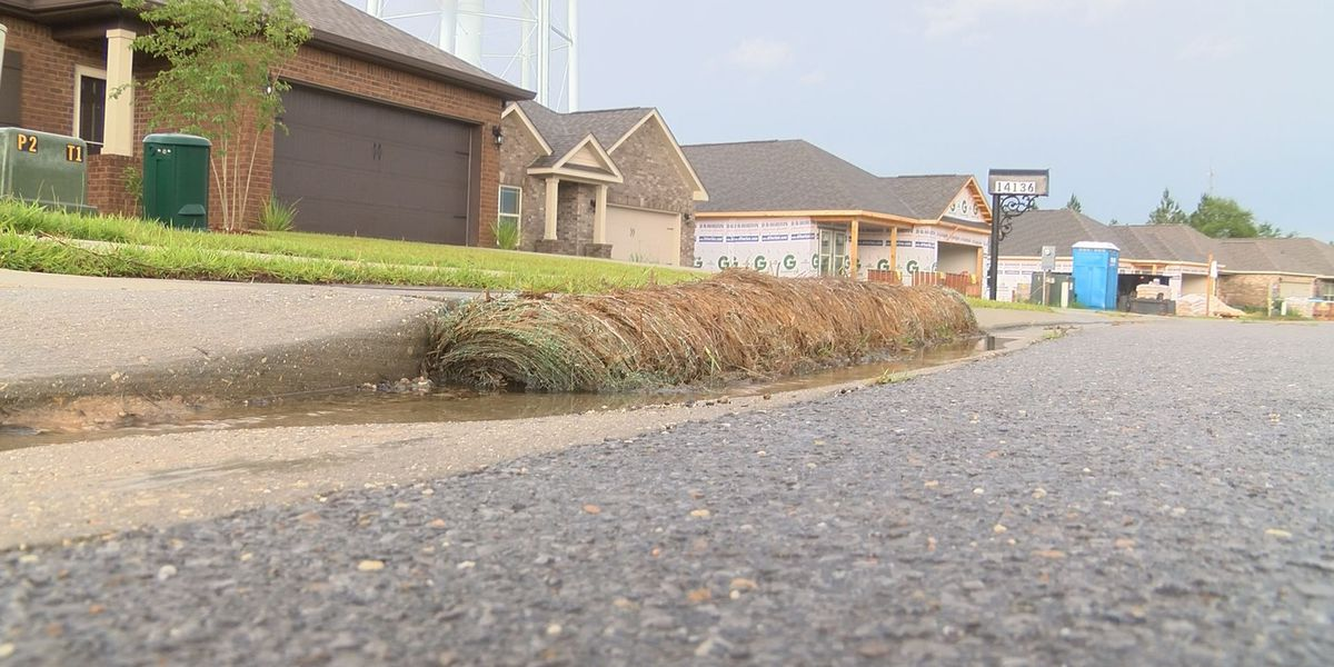 Action Report: Environmental laws cause issues for homeowners
