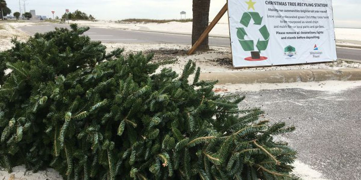 Christmas tree recycling locations now open