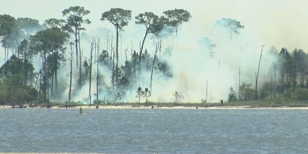 Prescribed burn on Deer Island good for habitat and for business