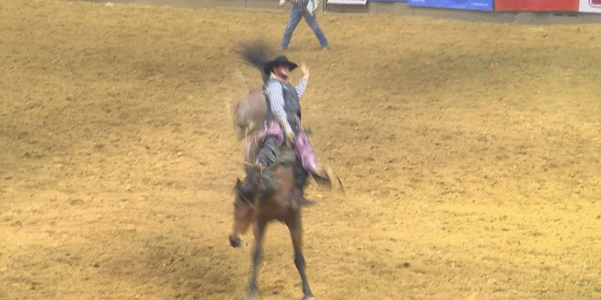 Last day of the Dixie National Rodeo featured bulls, cowboys and talent