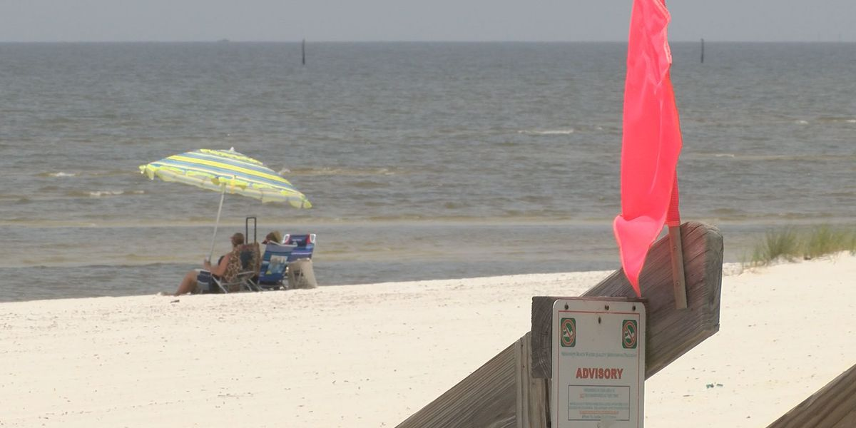 Beach Closure Signs Only Cover A Portion Of The Affected Area