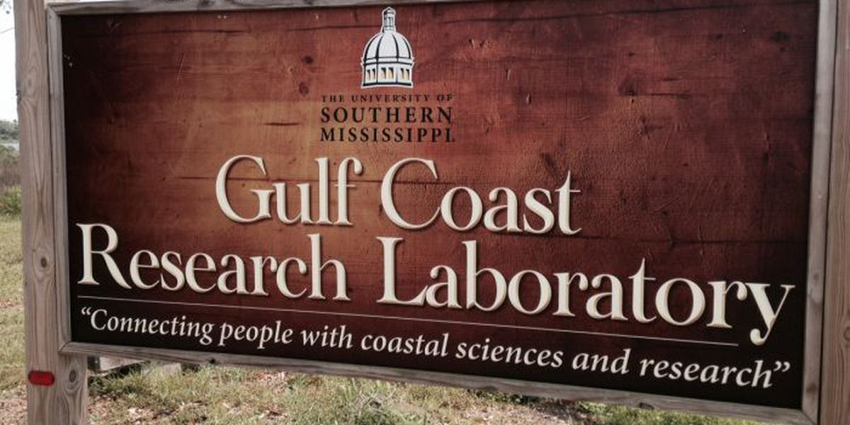 USM scientists stay busy with oil spill research