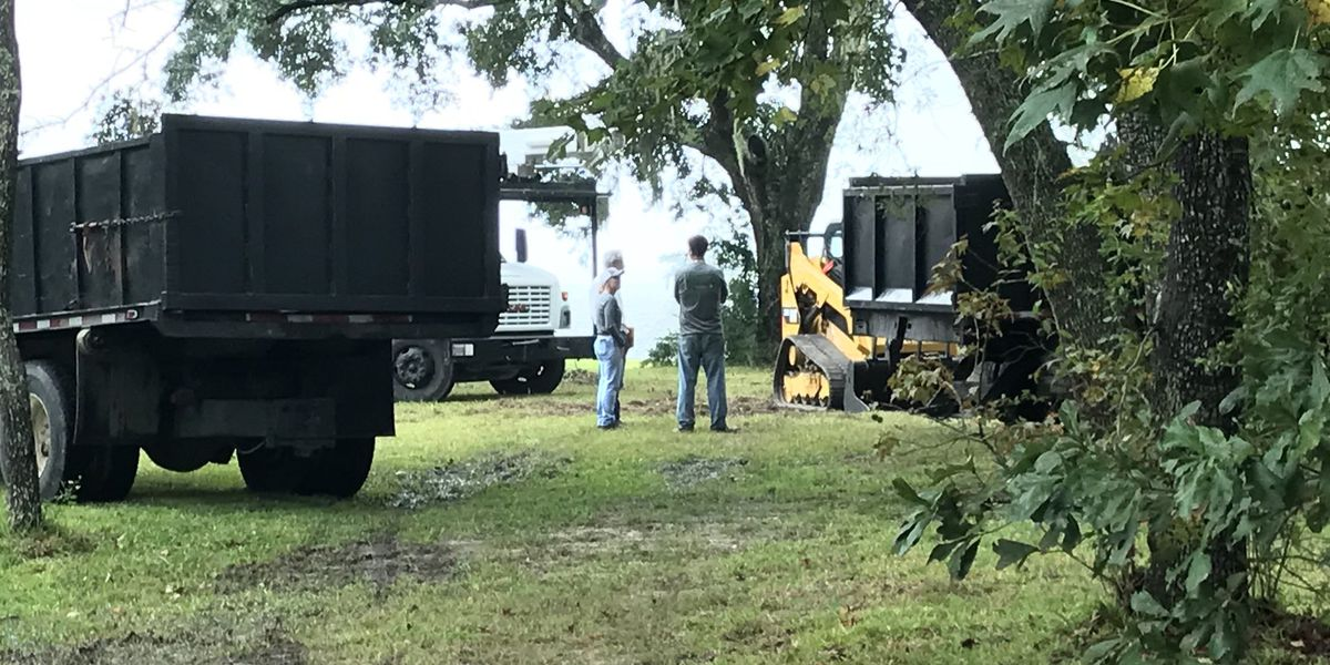 Work halted as crews show up to remove protected live oaks in Ocean Springs