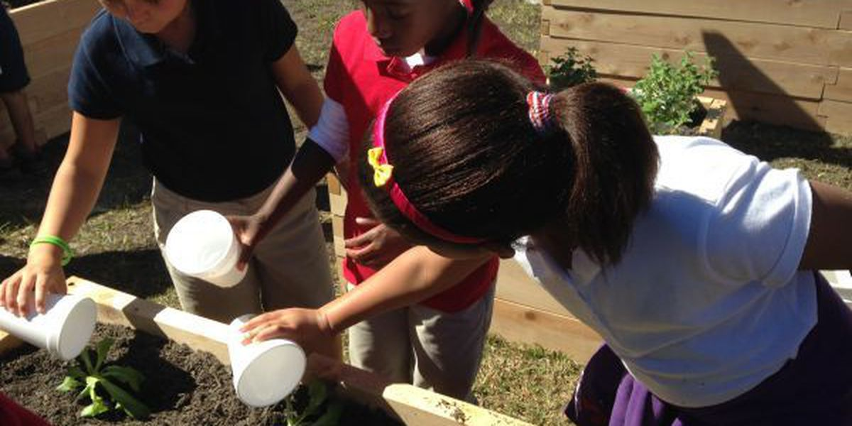 Cherokee Elementary students plant South Mississippi's first Teaching Garden