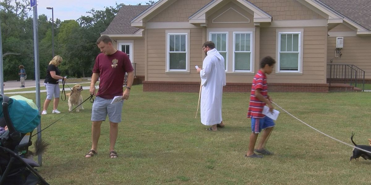 Coast pets take part in 800-year-old Catholic tradition