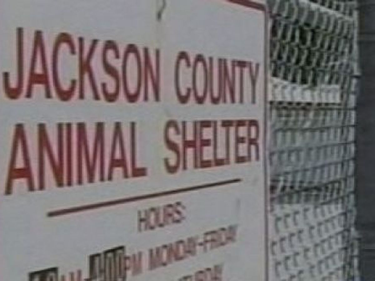 Jackson County cities reduce funding to animal shelter