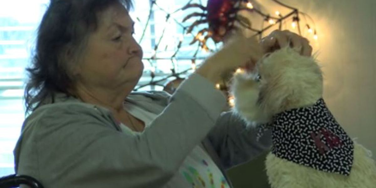 Realistic-looking stuffed animals bring smiles to nursing home residents