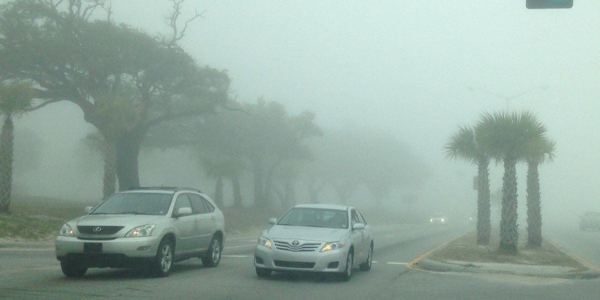 Fog blankets much of South Mississippi