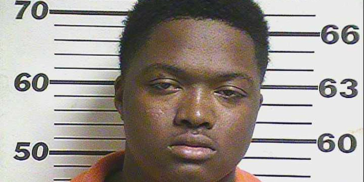 Arson suspect receives four additional charges