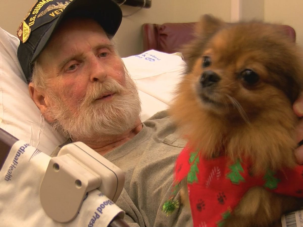 Pet therapy brings holiday joy to retirees at Biloxi VA
