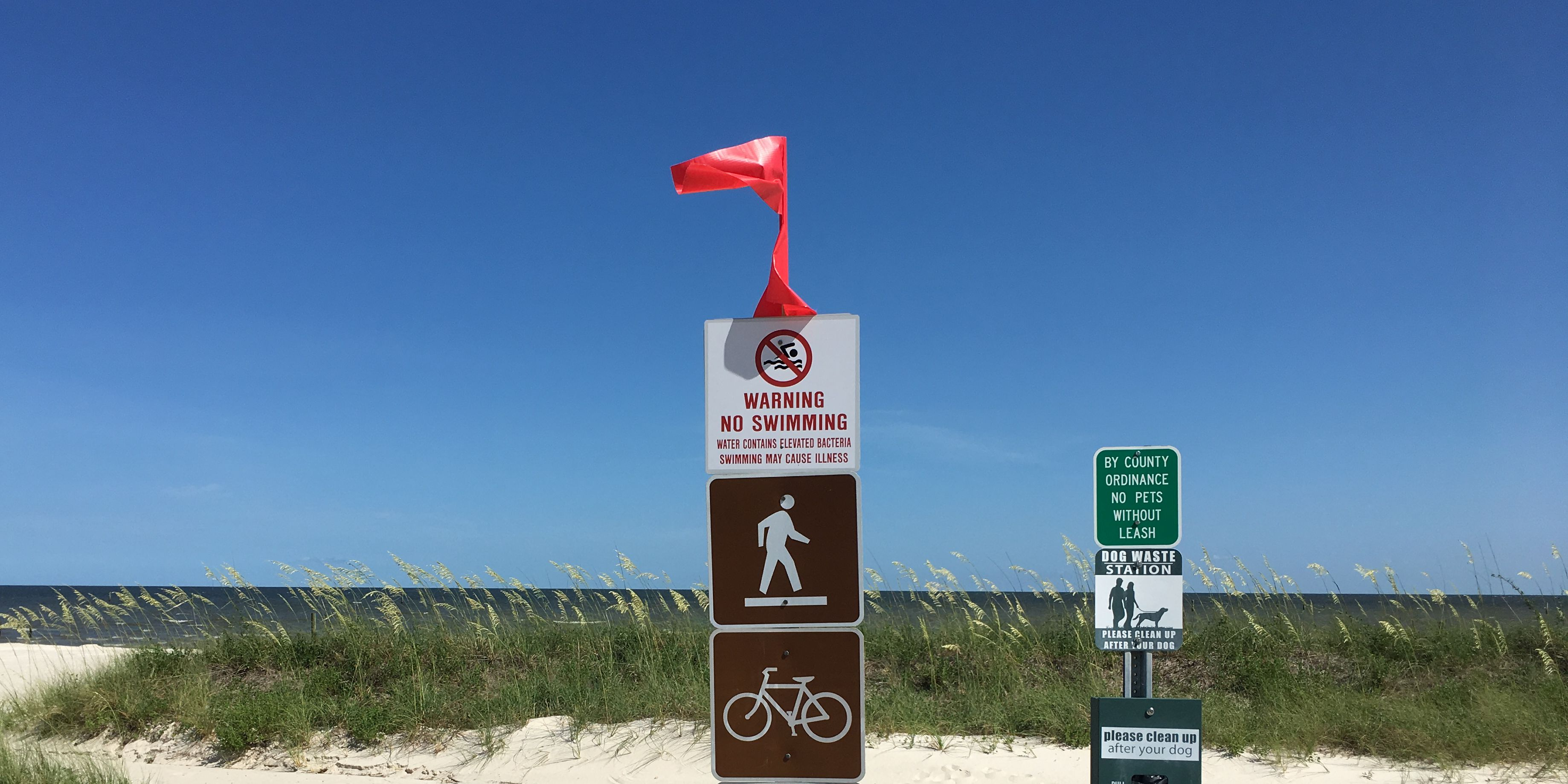 Update All South Mississippi Beaches Now Under Algae Related