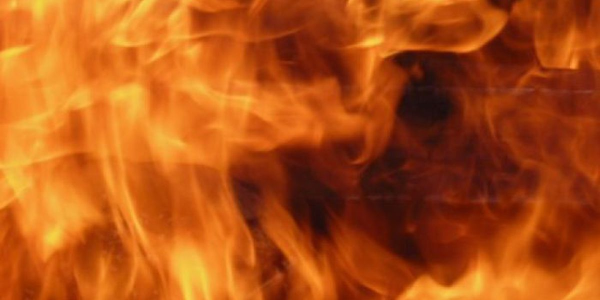 Family loses home, pet in Saucier fire