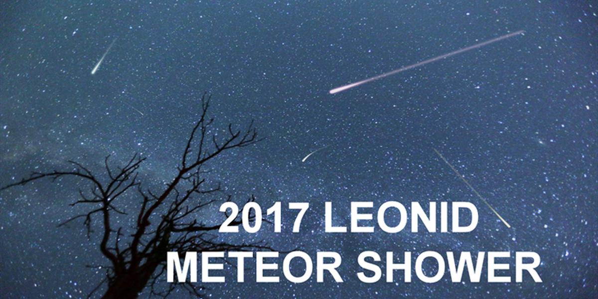 Leonid Meteor Shower peaks Saturday morning