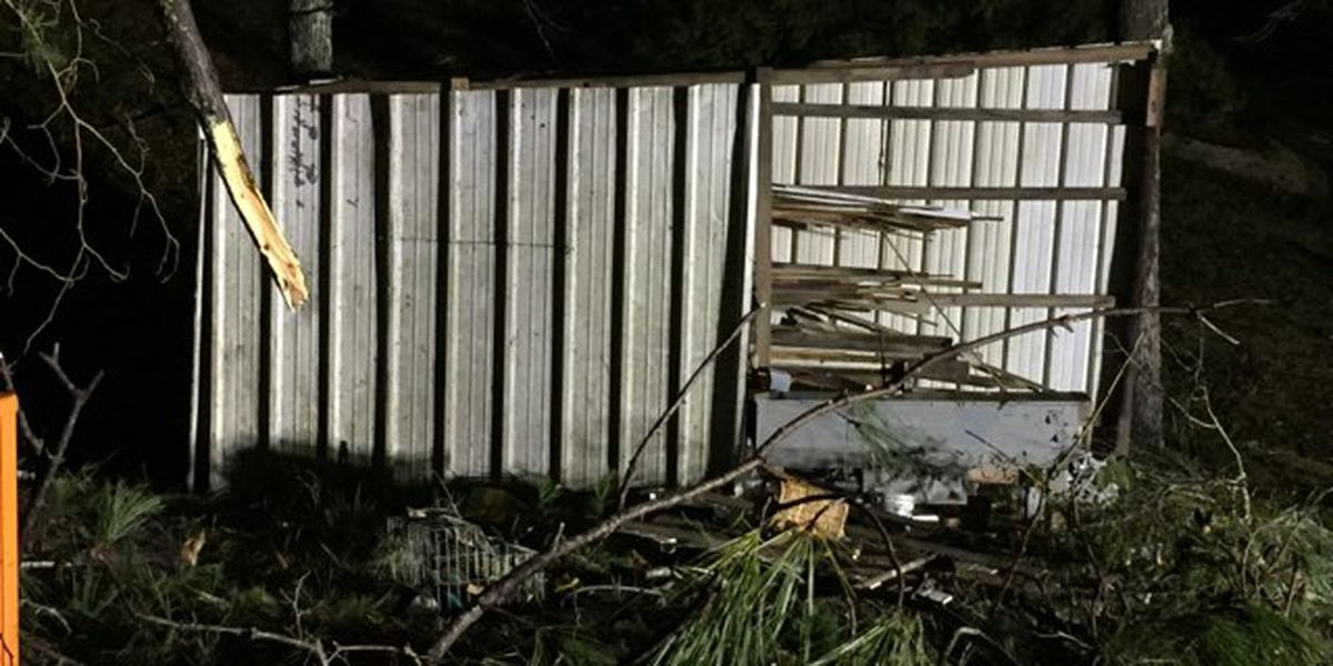 Rankin Co. homes damaged after overnight cold front, tornado