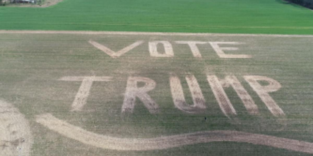Alabama man gains attention for 'Vote Trump' design in backyard