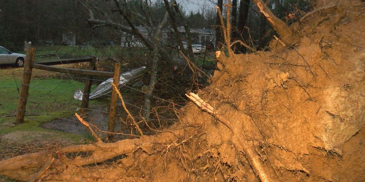 'It sounded like a freight train:' Severe weather rips through Attala Co.