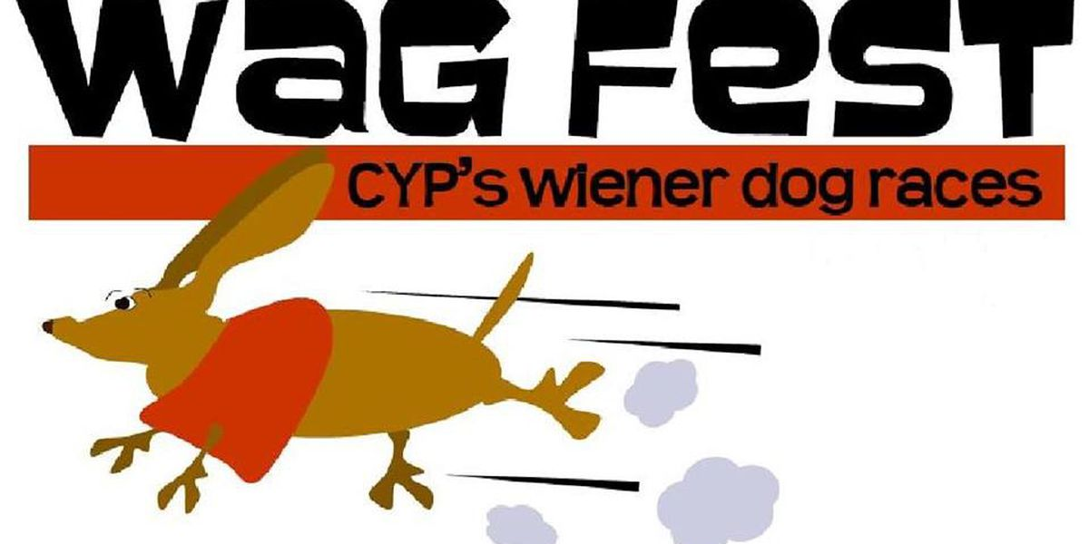 CYP's Wag Fest to be held, rain or shine