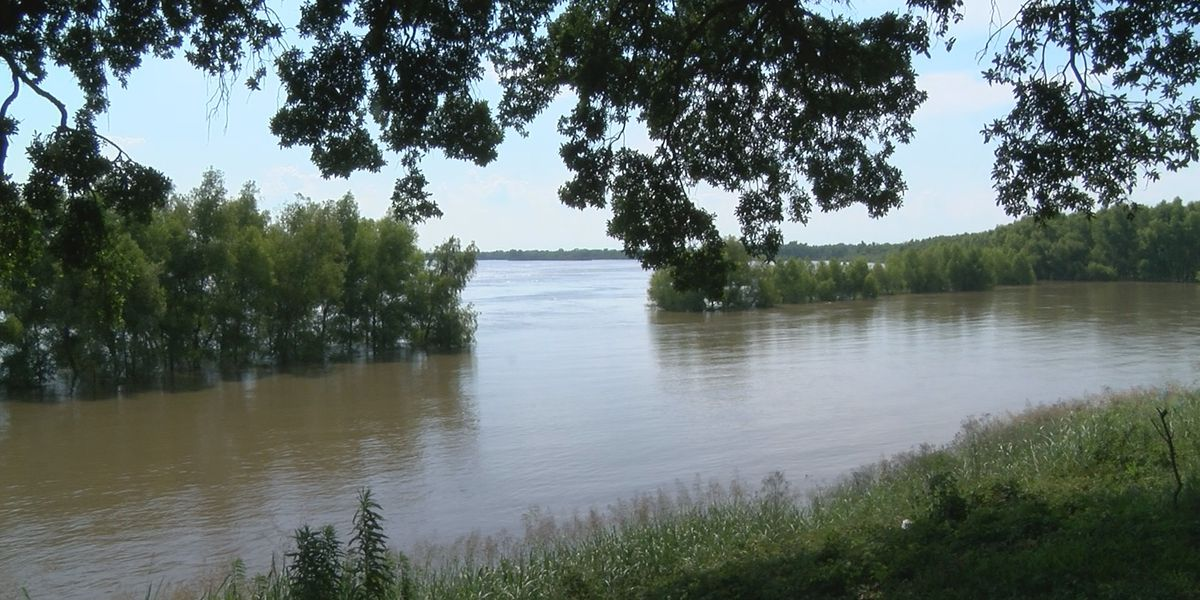 Mississippi River won't be as high as feared