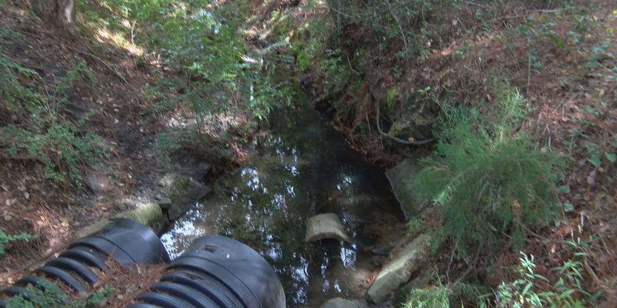 Ocean Springs residents look to city for answers after drainage issues