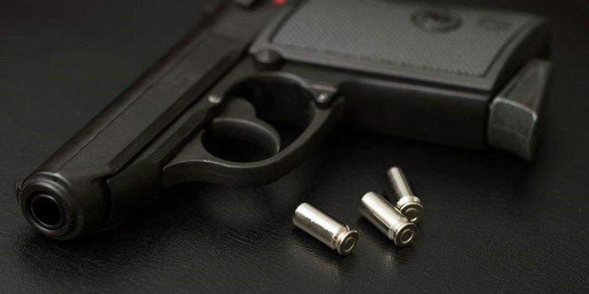 Homeowner fatally shoots man in self-defense, chief deputy says