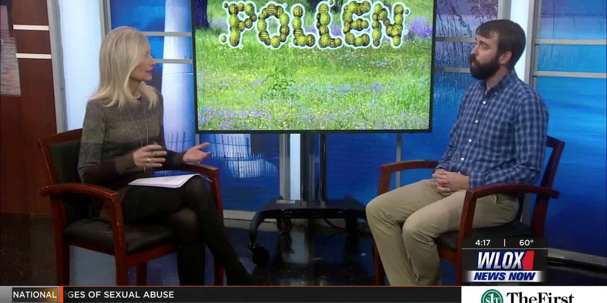 How to deal with pollen allergies this spring