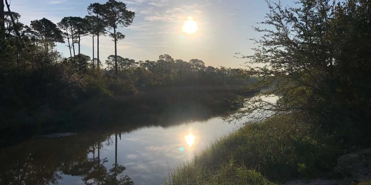Students learn about protecting Gulf Coast marine environment