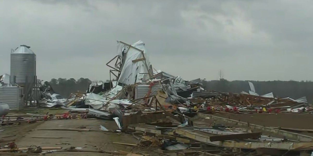 Homes, chicken houses damaged by Wayne Co. tornado