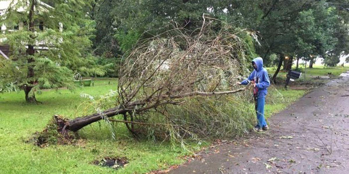 Overnight storms rip through Pascagoula