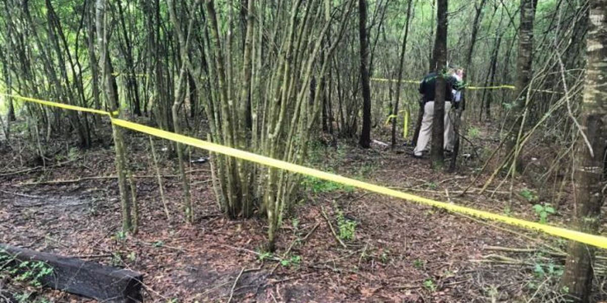 Search comes to an end after missing man's body found in woods