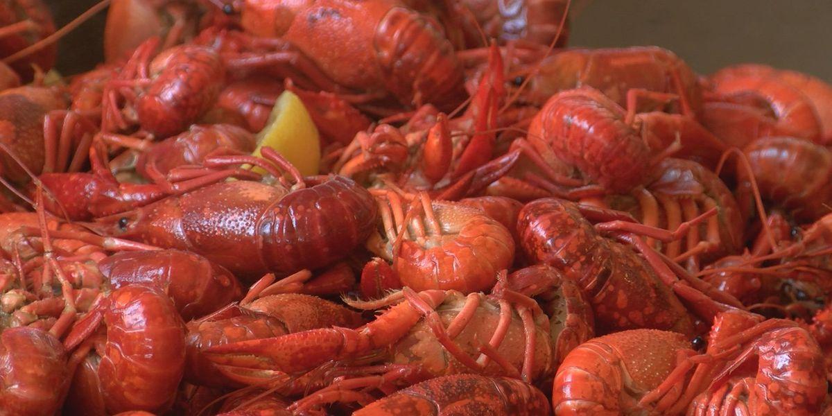Annual Elks Lodge crawfish boil draws dozens