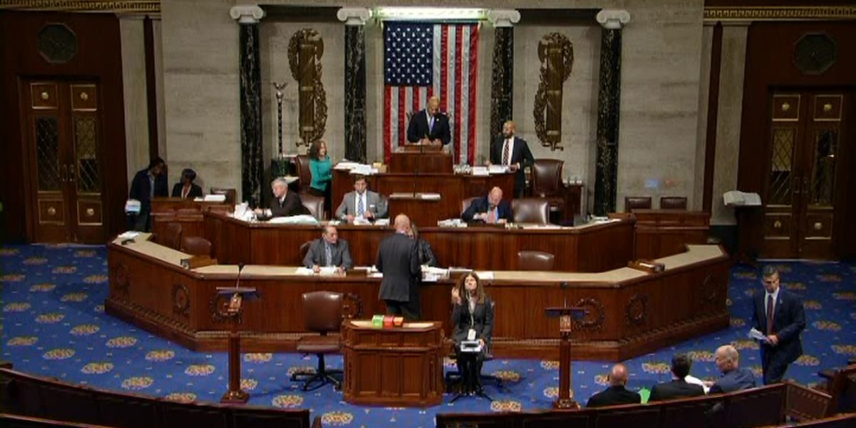 U.S. House passes bill making animal cruelty a federal felony