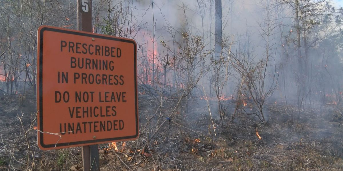 Scheduled burn for Harrison County canceled