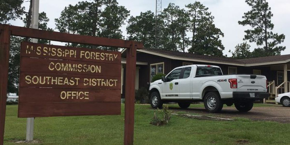 25 MS Forestry Commission employees laid off after budget cuts