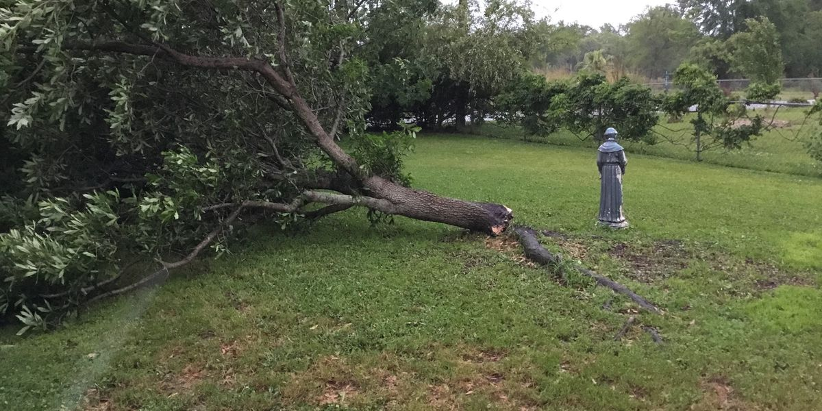 Severe weather risk moves out of South Mississippi, minor wind damage reported