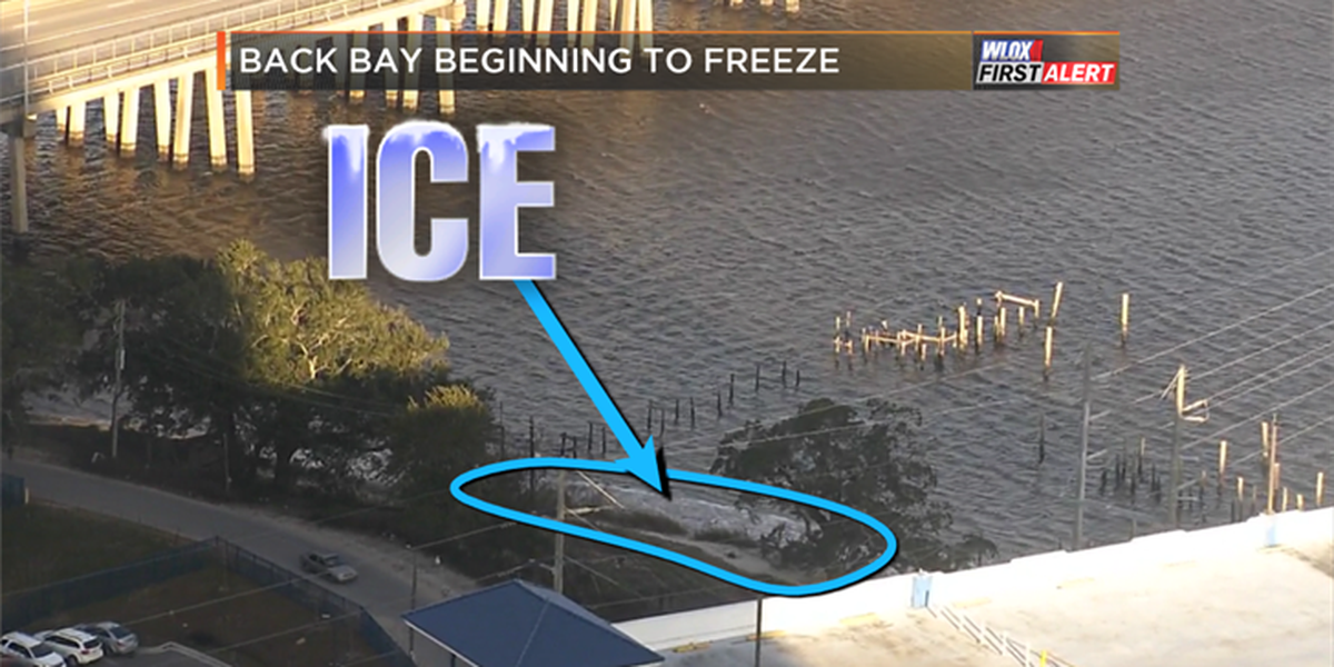 Ice forms on bay, hard freeze continues all week