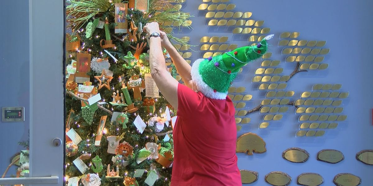Setup underway for annual holiday tree gala