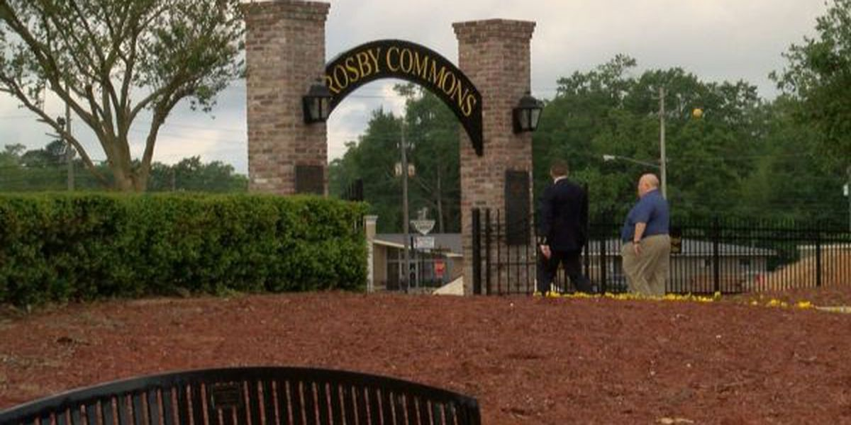 Crosby Commons starting final phase of construction in Picayune