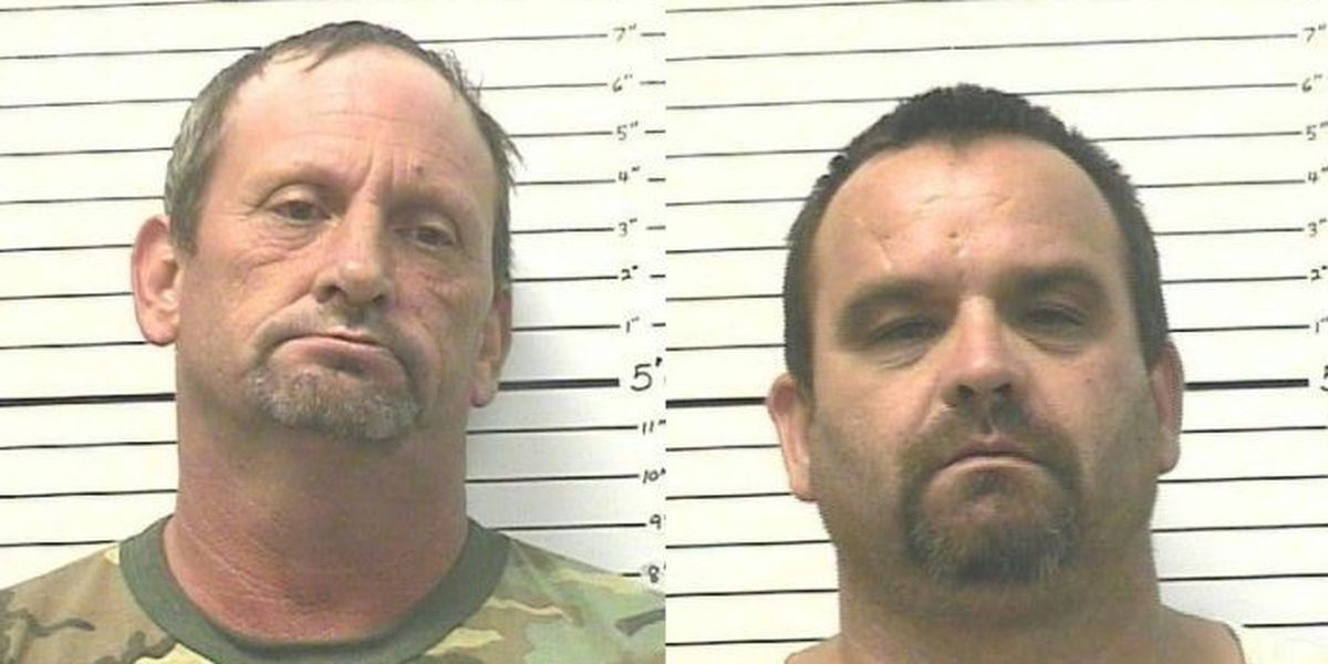 2 men admit to transporting meth from Texas