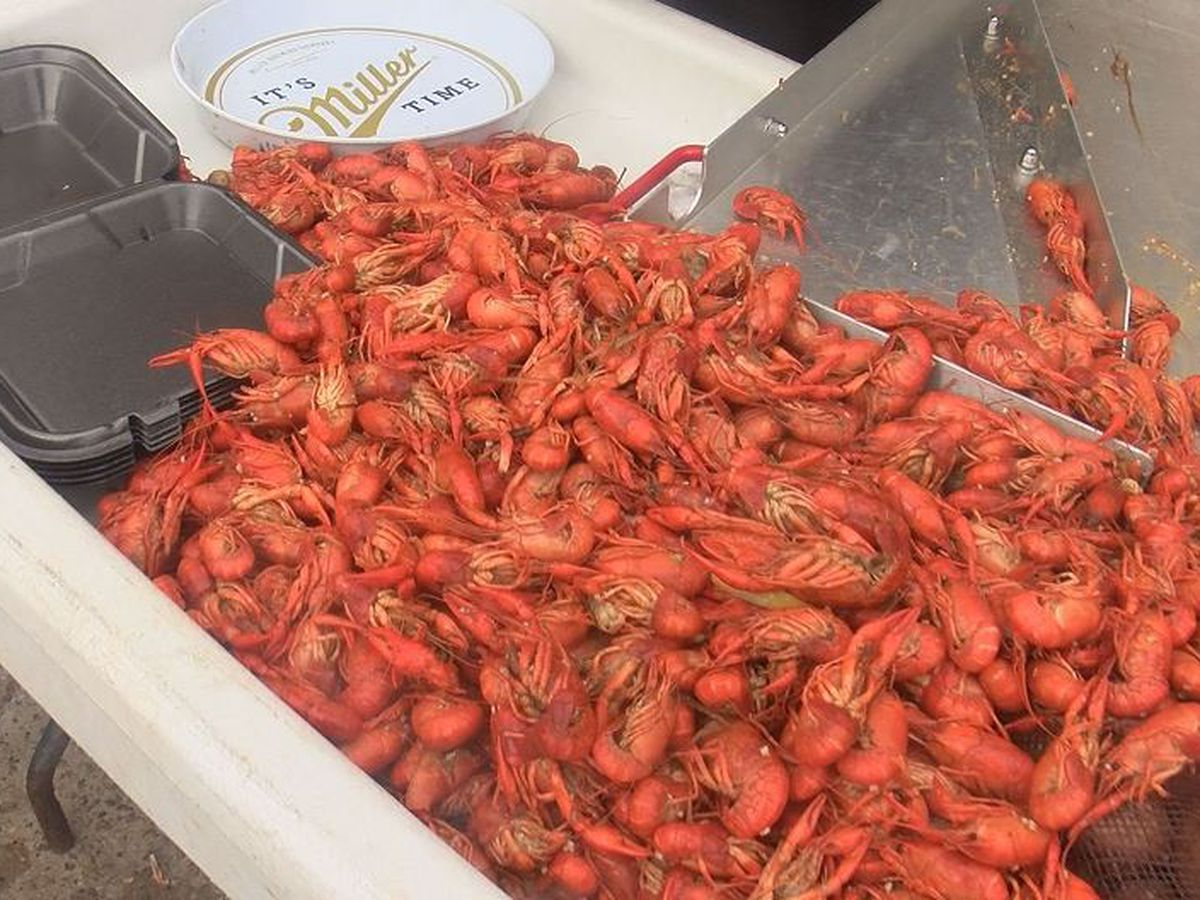 Crawfish supply down and prices up, but season has time to rebound
