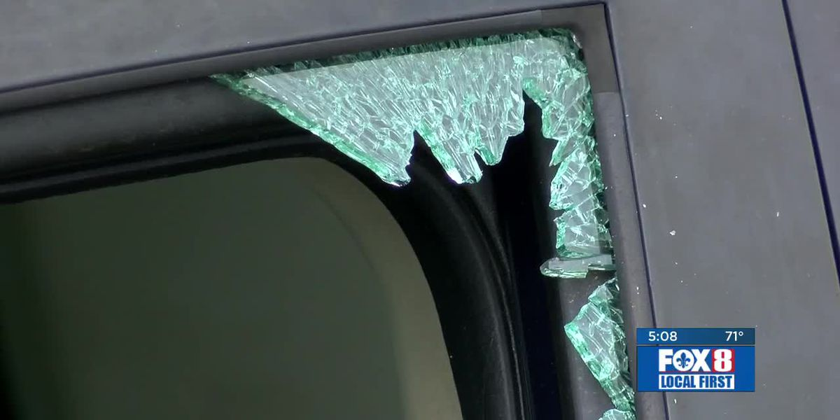 Dong Phuong Bakery, City Park targeted in latest vehicle burglaries
