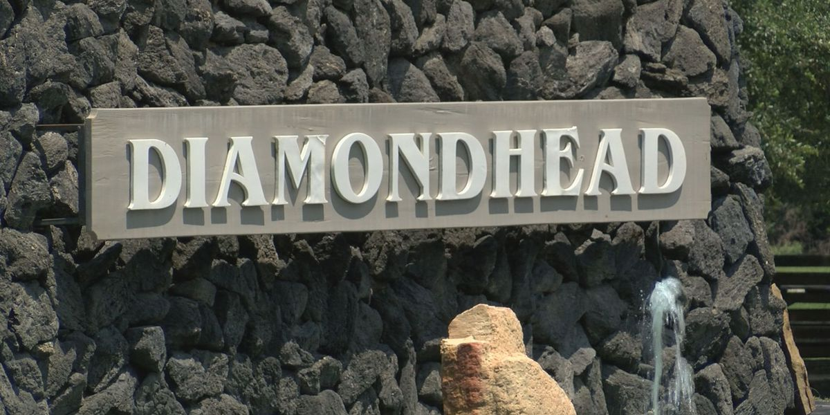 Diamondhead special mayoral election postponed due to Hurricane Sally