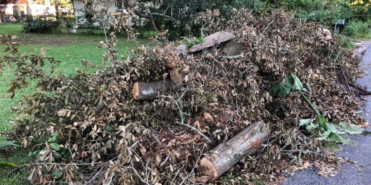 Jackson County will aid cities with Nate debris removal