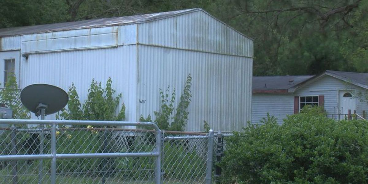 UPDATE: Dogs that killed Gulfport woman have been euthanized
