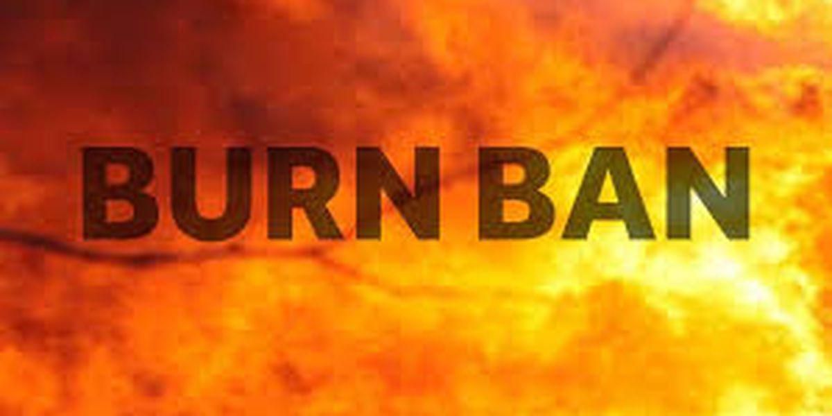 Burn ban in effect for Harrison County