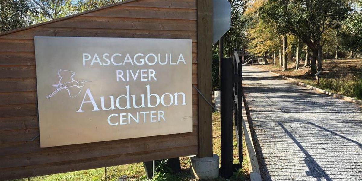 Pascagoula River Audubon looks for new funding sources