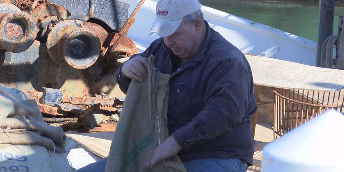 Fishermen hope to rescue oysters, as well as their livelihood