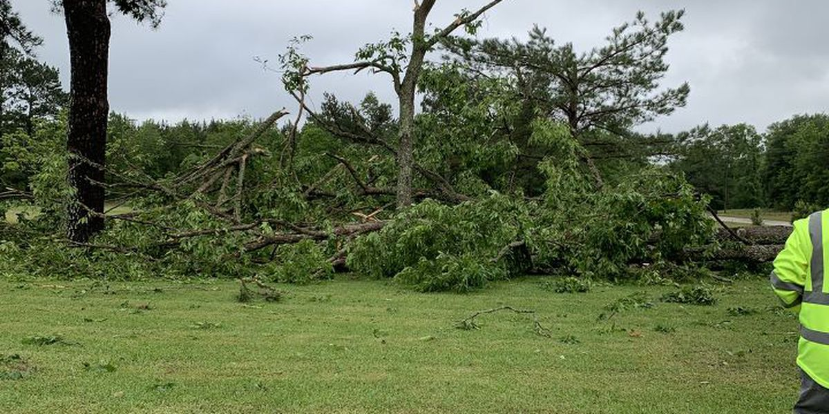 MEMA releases initial damage report from Sunday storms