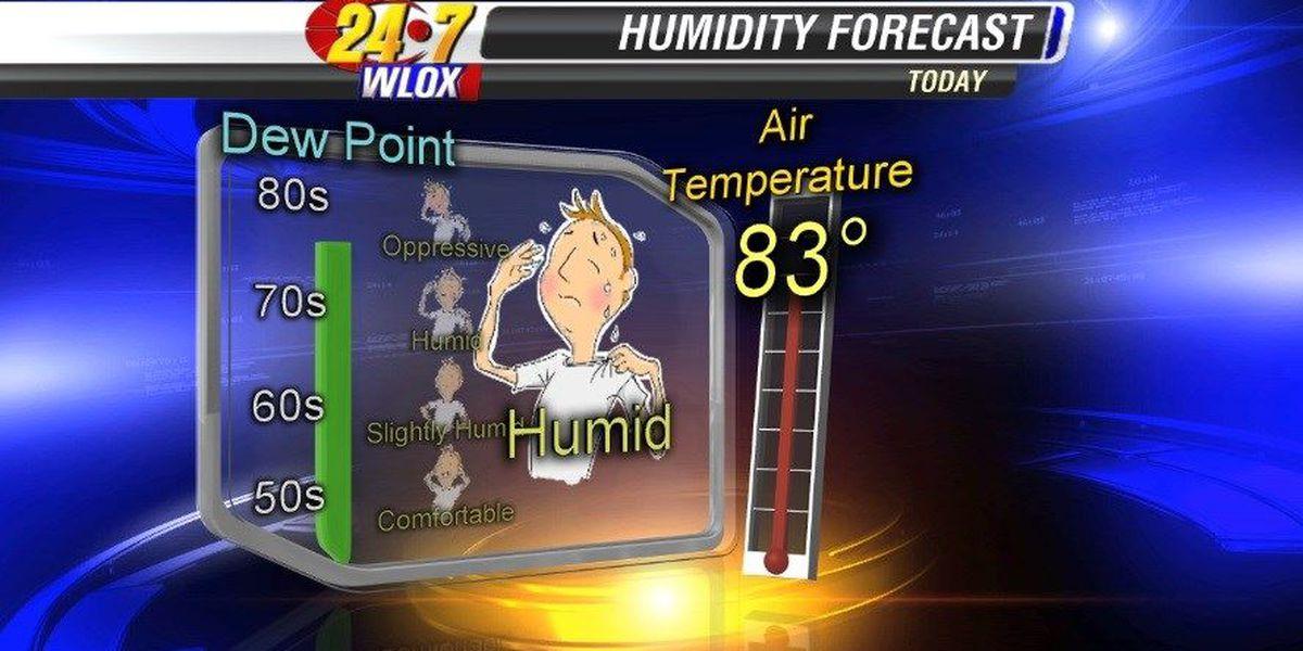 Wesley's Blog: Humidity on the Gulf Coast