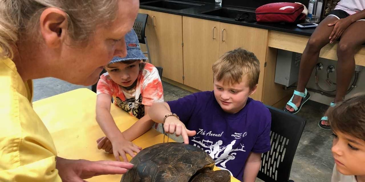 Summer camps at USM's GCRL campus offer fun, education on the water